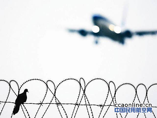哈尔滨机场引进机场鸟情信息系统