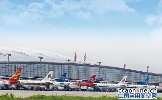 """南京开通多条""""客改货""""航线为国际物资流通搭建""""空中通道"""""""