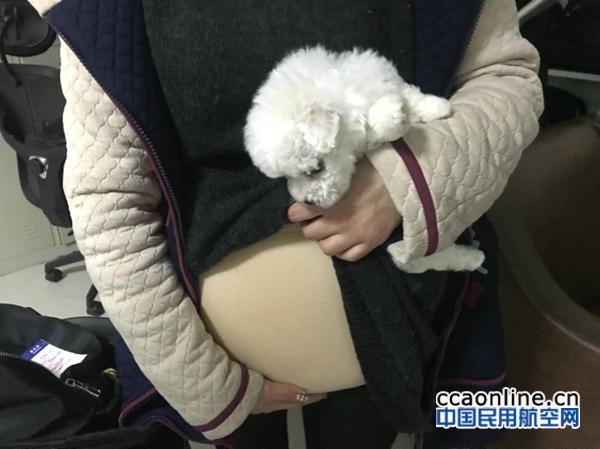 """武汉机场安检严把安全关,全力迎战春运""""大考"""""""