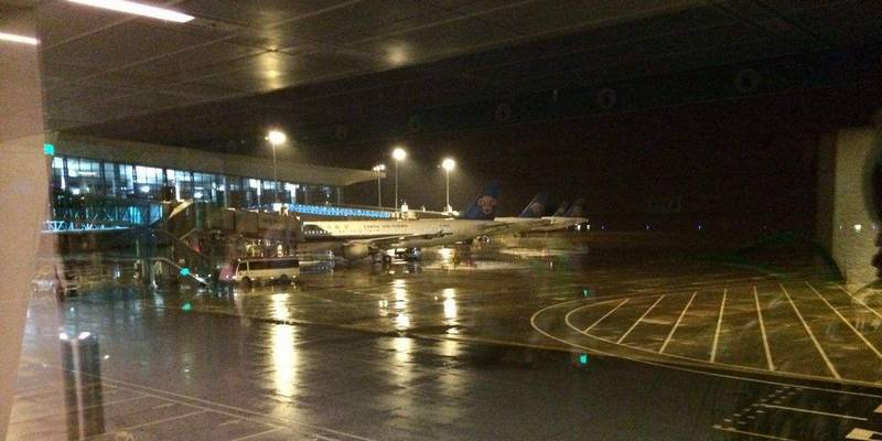 218匹进口种马抵达沈阳,机场海关连夜开展进境检疫